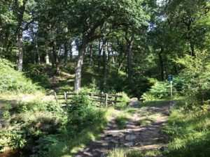 Hathersage via Stanage Edge and Higger Tor (12 miles) 2