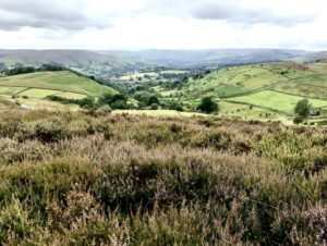 Hathersage via Stanage Edge and Higger Tor (12 miles) 4